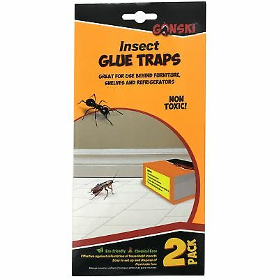 2 x Insect Sticky Box Glue Traps Non Toxic Spider Ant Woodlice Pest Control Bug