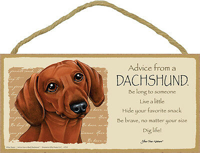 Advice From A DACHSHUND Red Brown Dog Head 5 x 10 Wood SIGN Plaque USA Made