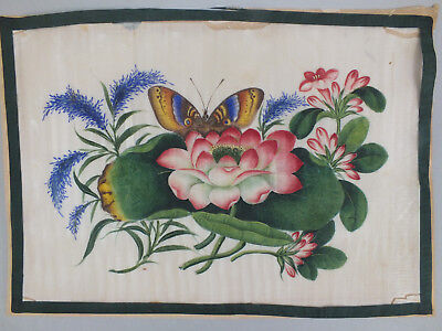 20) Fine Chinese Water Colour Study On Rice/pith Paper Of A Butterfly & Flowers