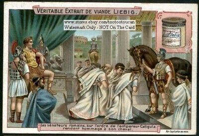 Roman Emperor Caligulas Horse  c1903 Trade Ad Card