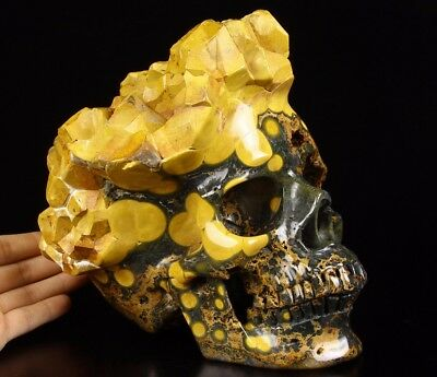 """Awesome Lifesized 8.1"""" OCEAN JASPER Carved Crystal Skull Sculpture #W491"""
