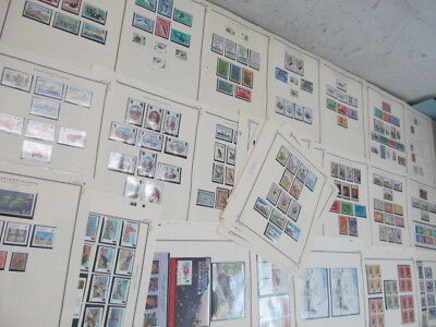 Nystamps British Falkland Islands large many mint NH stamp collection Scott page
