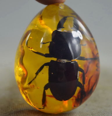 Exquisite Collectable Handwork Inside Amber Inlay Beetle Insect Exorcism Pendant