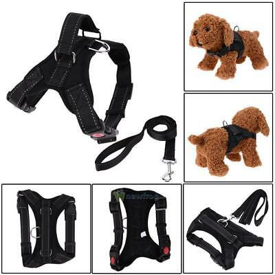 Small Pet Dogs Canvas Harness Collar Chest Strap Vest + Traction Rope Lead Leash