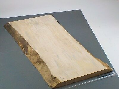 Waney Edged Spalted English Sycamore wood board. 320-360 x 890 x 21mm. 1266