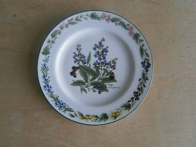 ROYAL WORCESTER PORCELAIN SALAD PLATE - HERBS - SAGE - 21cms - PERFECT CONDITION