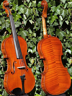 Rare ANTIQUE CZECH VIOLIN by Ladislav F. PROKOP, Chrudim,1924. OUTSTANDING TONE!