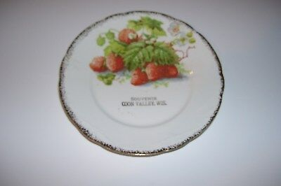 Darling SOUVENIR PLATE from COON-VALLEY,WISCONSIN