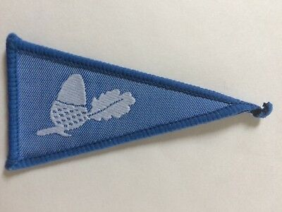 Pennant 4 Girl Guides Badge