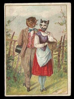 U35 - Anthropomorphic Cat Couple - French Victorian Trade Card