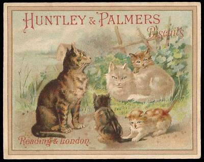 U36 - Cats & Kittens - Huntley & Palmers Victorian Trade Card
