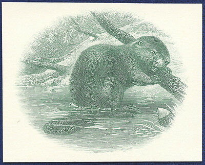 AMERICAN BANK NOTE Co. ENGRAVING: 029c CANADIAN BEAVER (Green)
