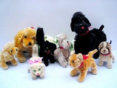 Lot of 5 STEIFF DOGS and 3 CATS, 10-22 cm 2x with ID's