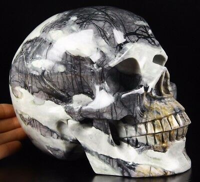 """Lifesized 7.4"""" PICASSO JASPER Carved Crystal Skull, Realistic,Crystal Healing"""