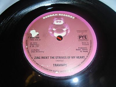 The Trammps - Zing Went The Strings Of My Heart And Penguin at The Big Apple