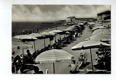 CECINA MARE - Panorama Vg. 1956 F.G.
