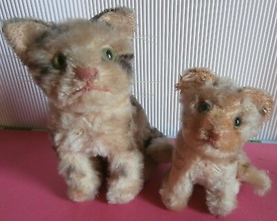 2 ANTIQUE  Steiff Germany   TEDDY  BEAR CATS  one  ID button