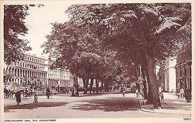 Cheltenham Spa the Promenade, Vintage Sepia used Postcard. Glos Cotswolds