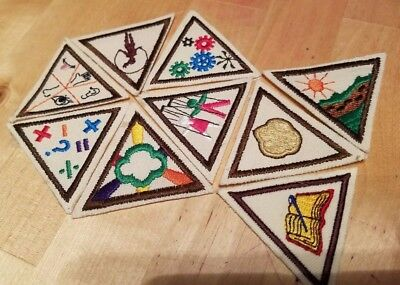 Lot of 9 NEW Girl Scouts Brownie Try It's Badges