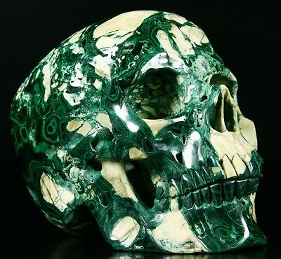 """Giant 8.0"""" MALACHITE Carved Crystal Skull, Super Realistic, crystal Healing #761"""