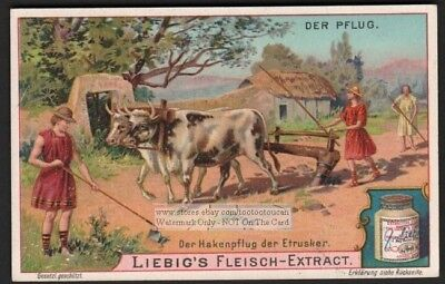Eutruscan Farmers Plowing With Oxen Crop Cattle Hakenpflug c1903 Trade Ad Card g