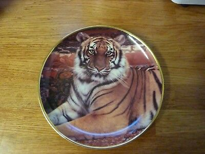 """Collectable Tiger Plate (8"""" ) by Ron Kimball for Franklin Mint Limited Edition."""