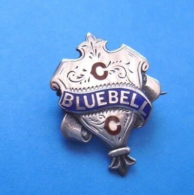 Antique 1903 BLUEBELL CRICKET CLUB SHIELD STERLING SILVER & ENAMEL MEMBERS BADGE