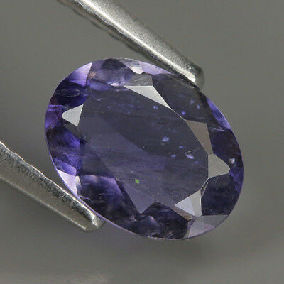 Precious 0.83 Cts  Natural Africa Violet IOLITE Oval Gemstone @ See Video !!
