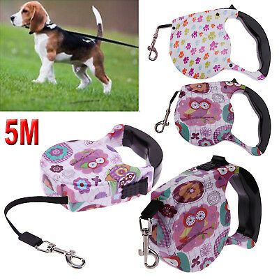 5M Pet Dog Puppy Magic Automatic Leashes Retractable Traction Rope Walking Lead
