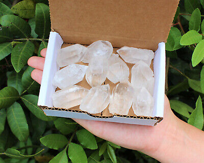 Clear Quartz Points Crystal Collection 1/2 Lb (8 oz) Natural Specimens in Box