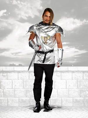 Handsome Knight Metallic Armor Dragon Slayer Medieval & Gothic Costume Adult Men