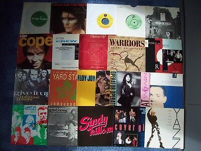 Superb Punk & New Wave Collection: Pretenders, Kid Creole, Adam Ant, Yazz, Cope