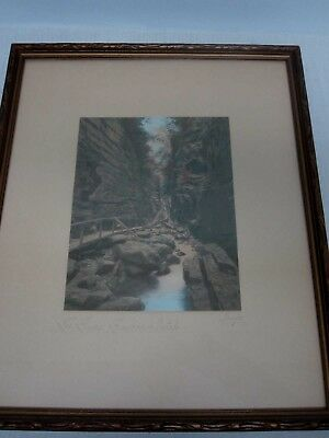"""Signed Charles Sawyer """"the Flume, Franconia Notch"""" Hand Tinted Framed Photograph"""