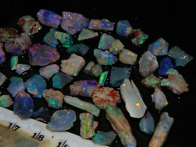 Nice Small Rough/Rubbed Opals 56.5ct Lightning Ridge Multicolours Crystal/Fossil