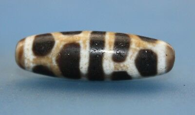 37*12 mm Antique Dzi Agate old  Bead  from Tibet ***Free shipping***