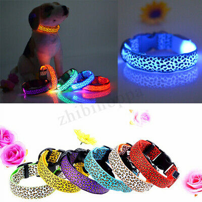 NEW Pets Dogs Night Safety Collar Light Up Leopard Nylon LED Collars S M L