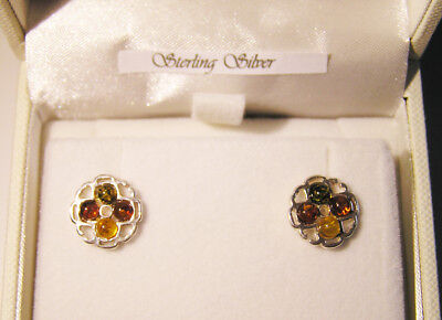 Gorgeous Baltic Amber And Sterling Silver Earrings- Boxed With Certificate