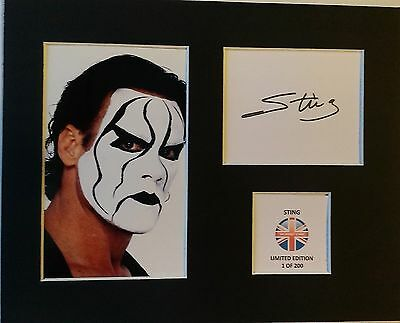Limited Edition Sting Wrestling Legend Signed Mount Display WCW AUTOGRAPH