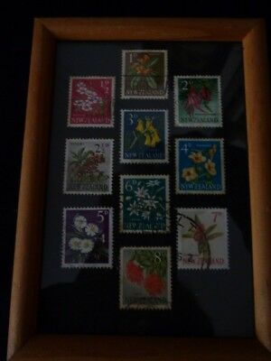 Genuine old New Zealand FLOWERS postage stamps framed pictures
