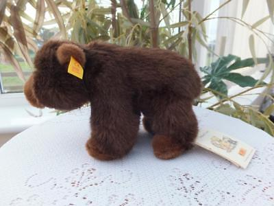 Vintage German Steiff Standing Brown Baby Grizzly Bear Ear Button & Tags  069307