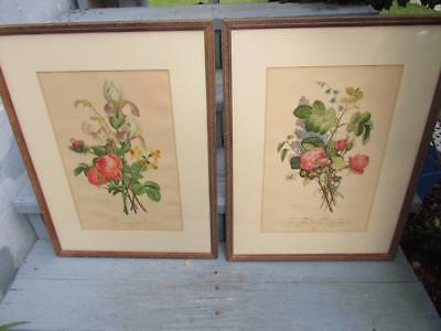 Gorgeous Antique French Etching Pair Rose Pictures Original Frames Jl Provost
