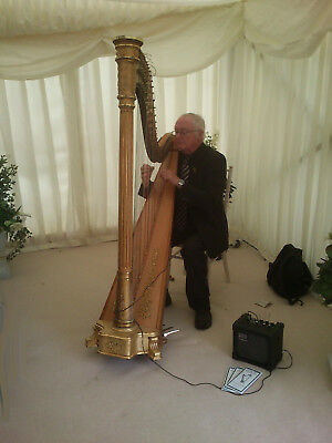 Sampler Cd Of Wedding Music By Lincolnshire Wedding Harpist Robert Pacey