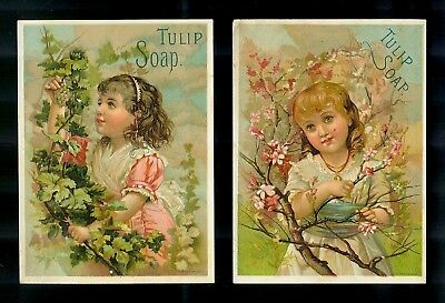 Pretty Little Girls With Apple Blossoms & Grapes-2 Victorian Trade Cards-SALE