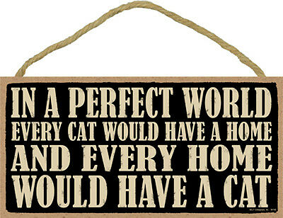 In A Perfect World Every Cat Would Have A Home 5x10 Wood SIGN Plaque USA Made