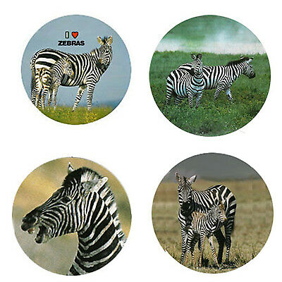 Zebra Magnets : 4 Way-Cool  Zebras for your Fridge or Collection-A Great Gift