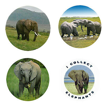Elephant Magnets: 4 Cool & Elegant Elephants for your Collection-A Great Gift