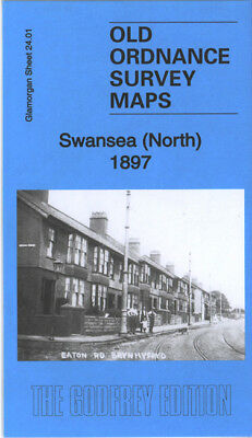 Old Ordnance Survey Map Swansea North 1897