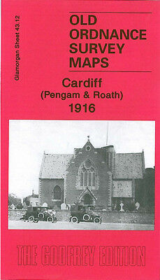 Old Ordnance Survey Map Cardiff Pengam Roath 1916 Waterloo Gardens Nora Street