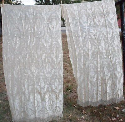 Antique Netted Lace Curtains 2 PANELS Fringed Floral Scrolls Medallions Rayon?