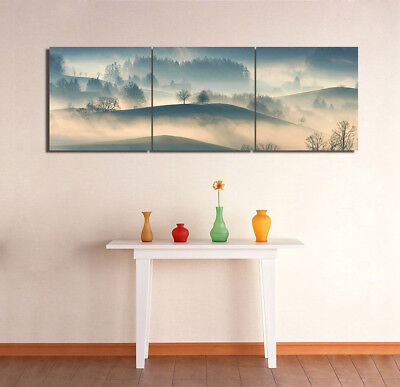 "Wall Art Picture-Foggy Country Decor Canvas Print Painting 16x16""x3pc W/No Frame"
